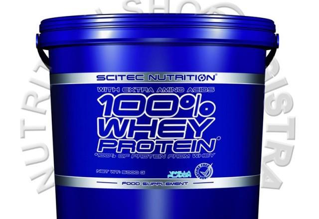 Prodaja Whey proteina 100
